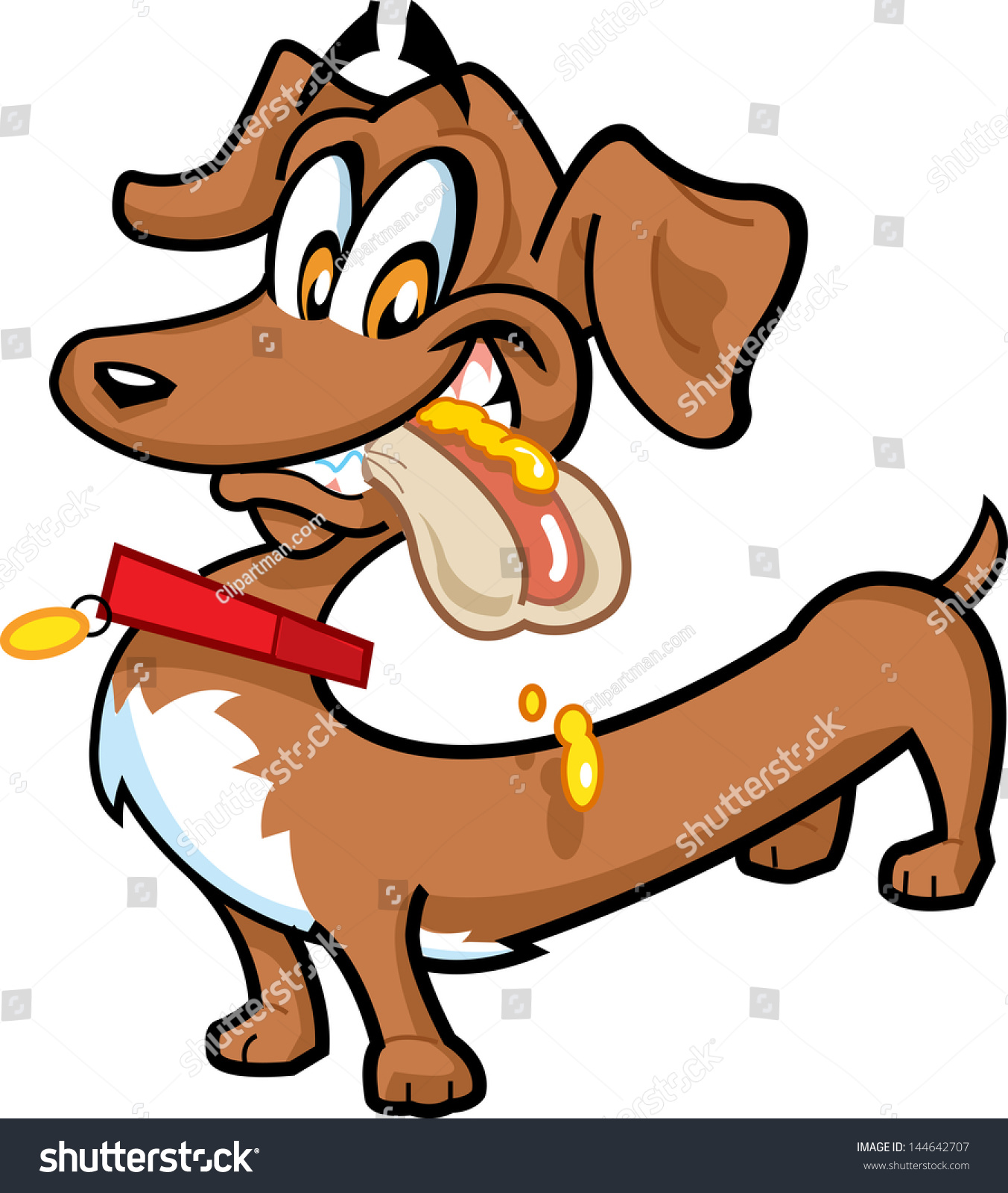 Hot Dog Canine