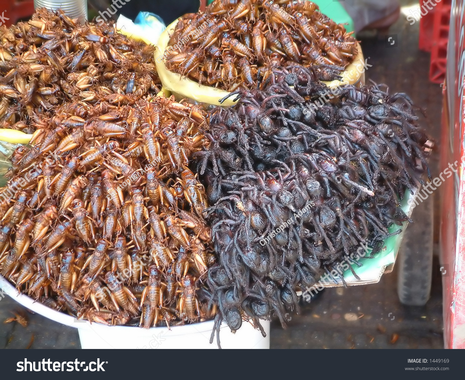 pile crickets spiders sale cambodian market stock photo edit now