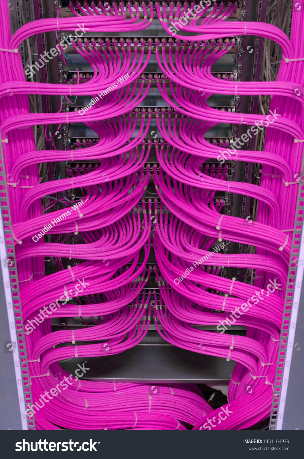 Network switch and network cable in a data center #1451164979
