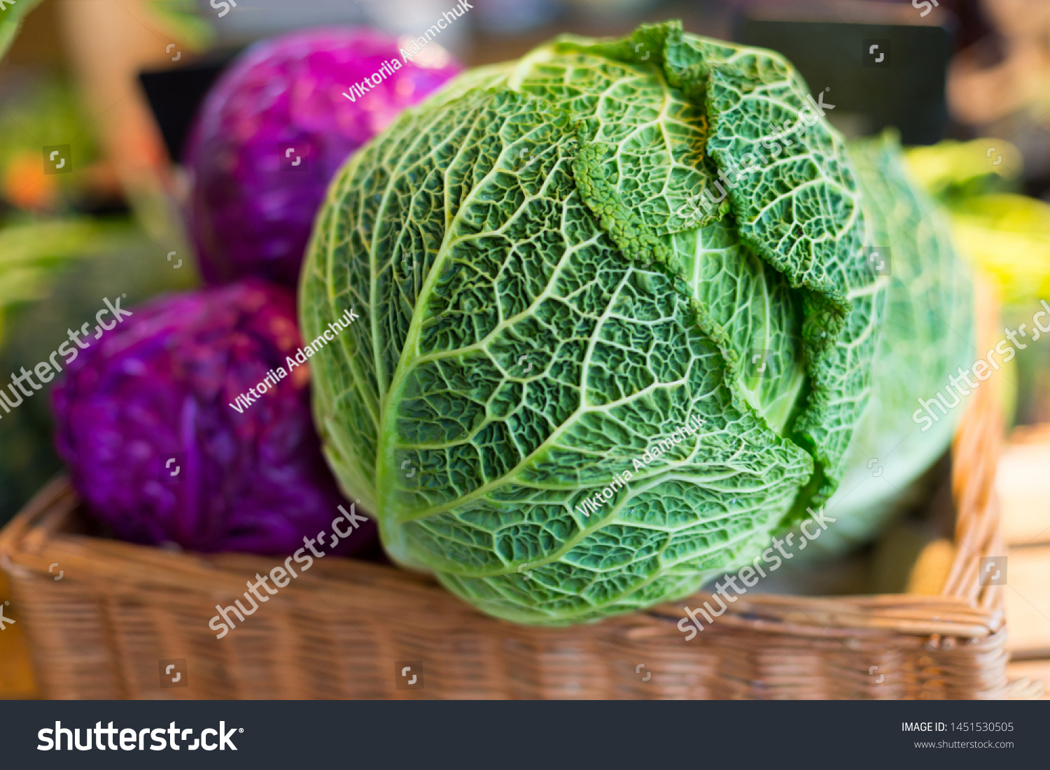 Savoy Cabbage Super Food Close On Stock Photo Edit Now 1451530505