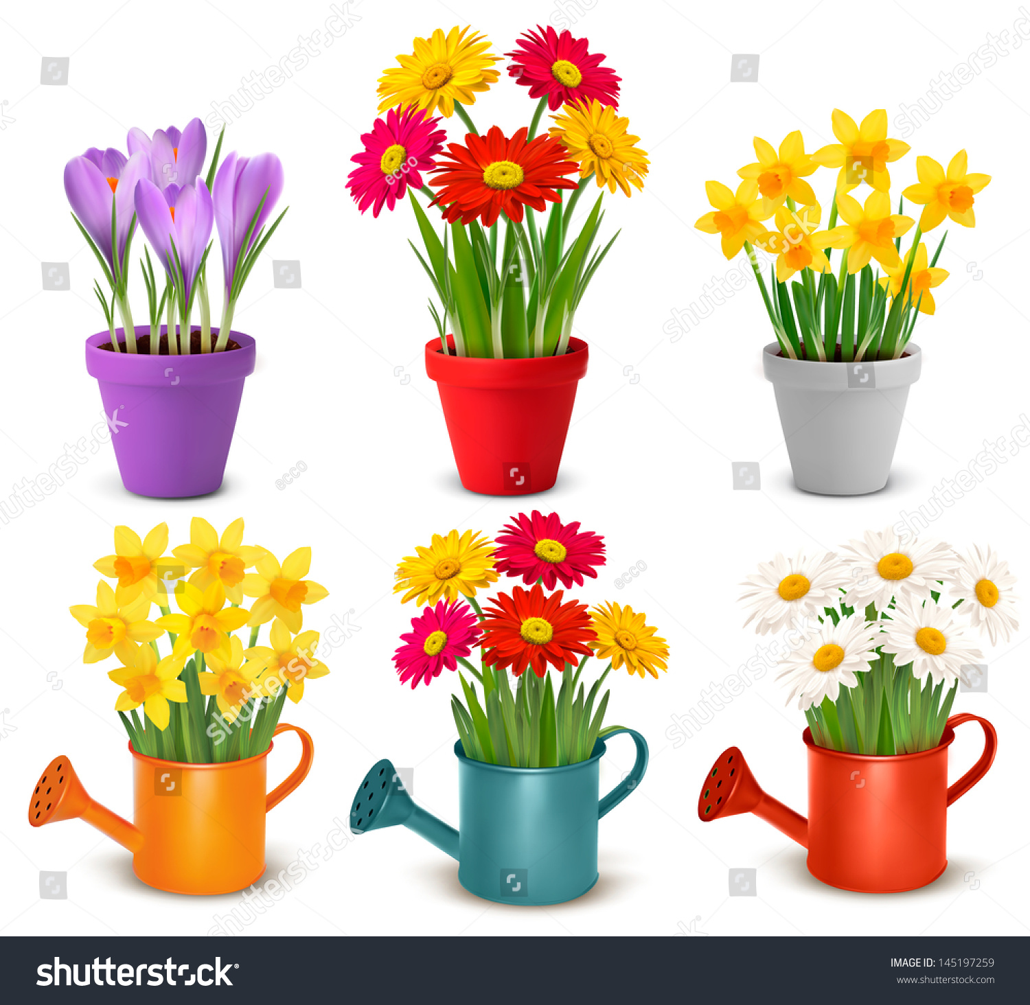 Collection Spring Summer Colorful Flowers Pots Stock Illustration