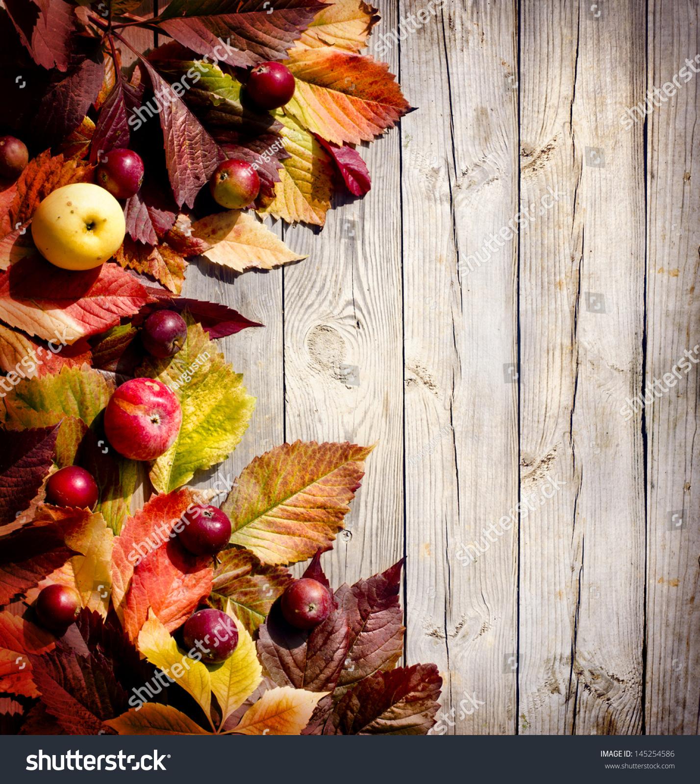 Vintage Autumn Border Apples Fallen Leaves Stock Photo 145254586