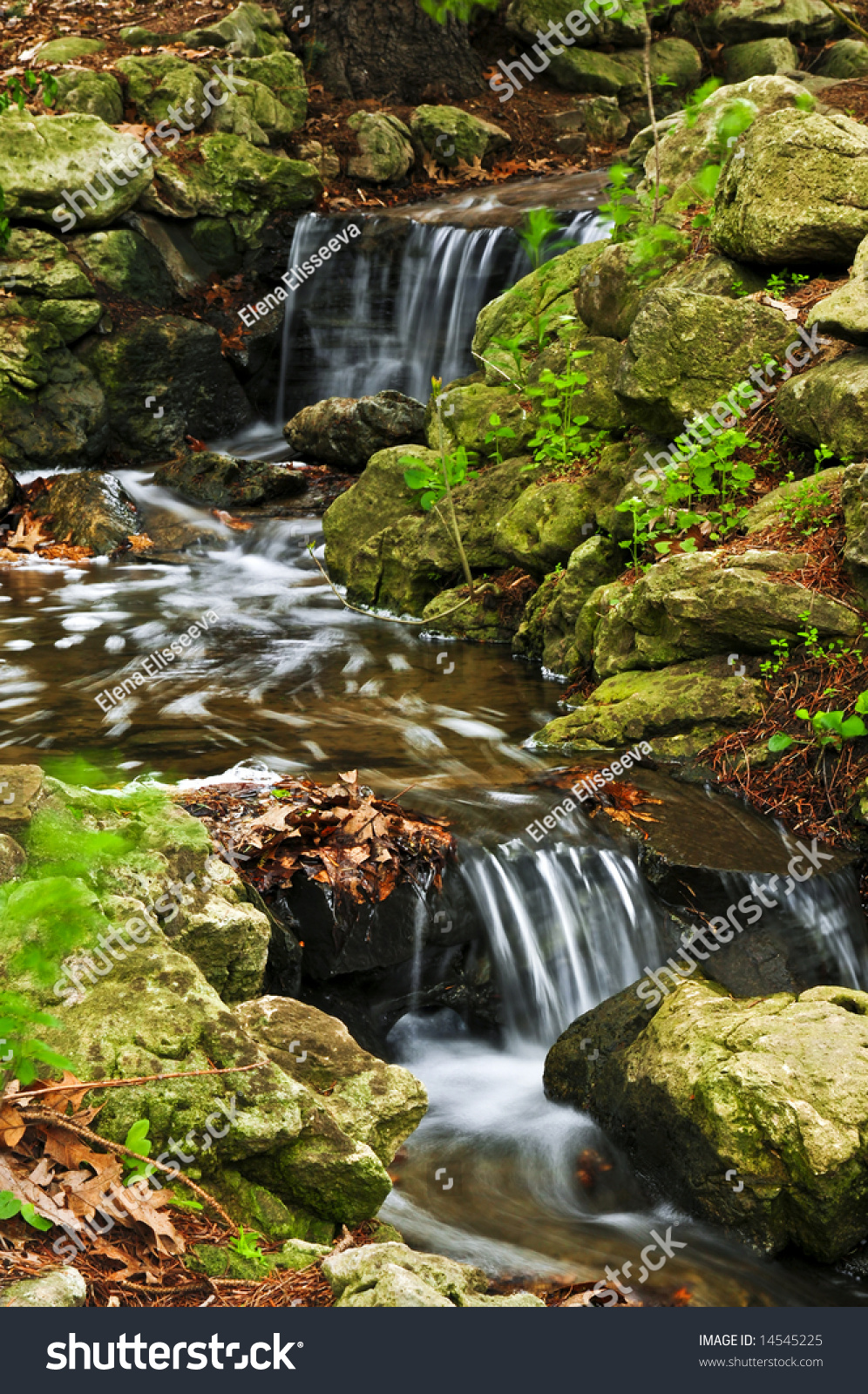 Creek Small Waterfalls Japanese Zen Garden Stock Photo & Image ...