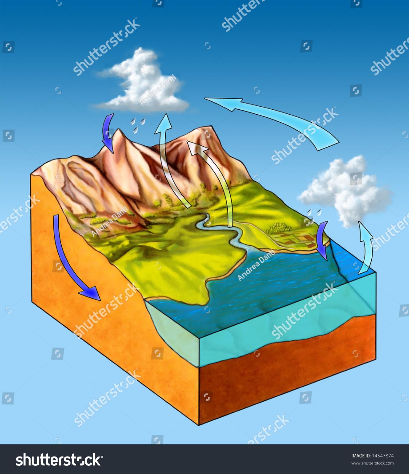 Water Cycle Diagram  Digital Illustration