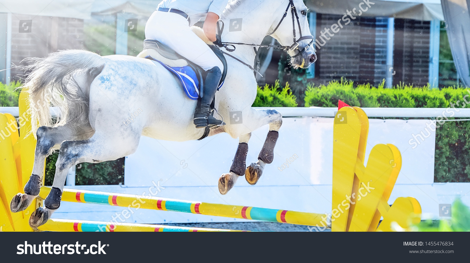Horse Rider Light Uniform Performing Jump Stock Photo Edit Now 1455476834