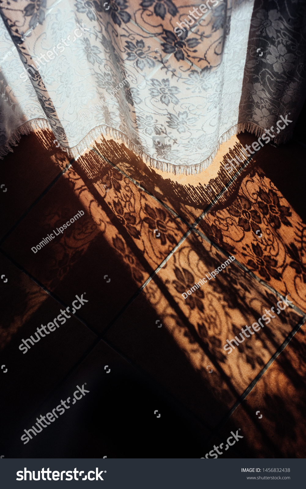Lace Curtain Pattern Shadows On Terra Stock Photo Edit Now 1456832438