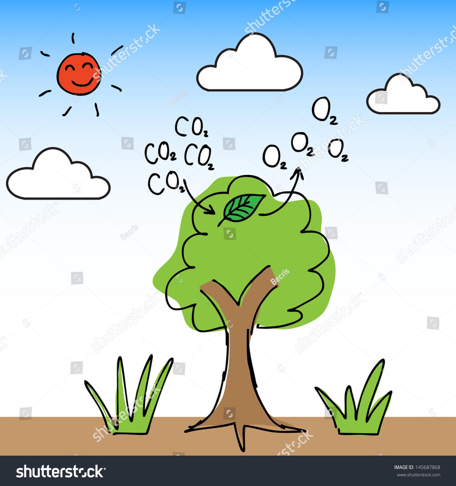 how to get carbon dioxide