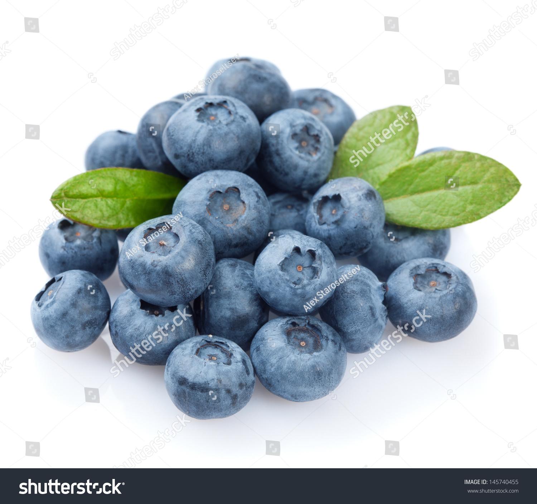 Blueberries On White Background Stock Photo 145740455 ...