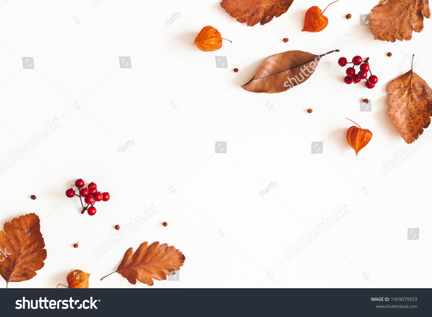 Autumn composition. Dried leaves, flowers, rowan berries on white background. Autumn, fall, thanksgiving day concept. Flat lay, top view, copy space #1459079333