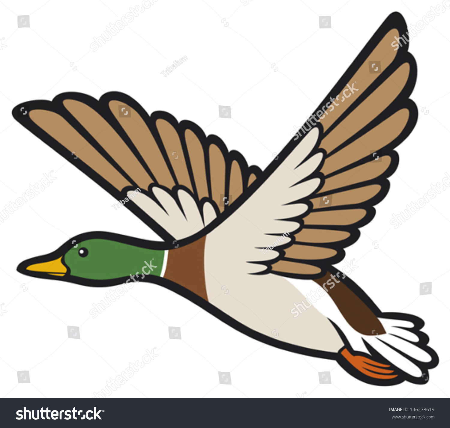 Pics For > Flying Duck Drawing