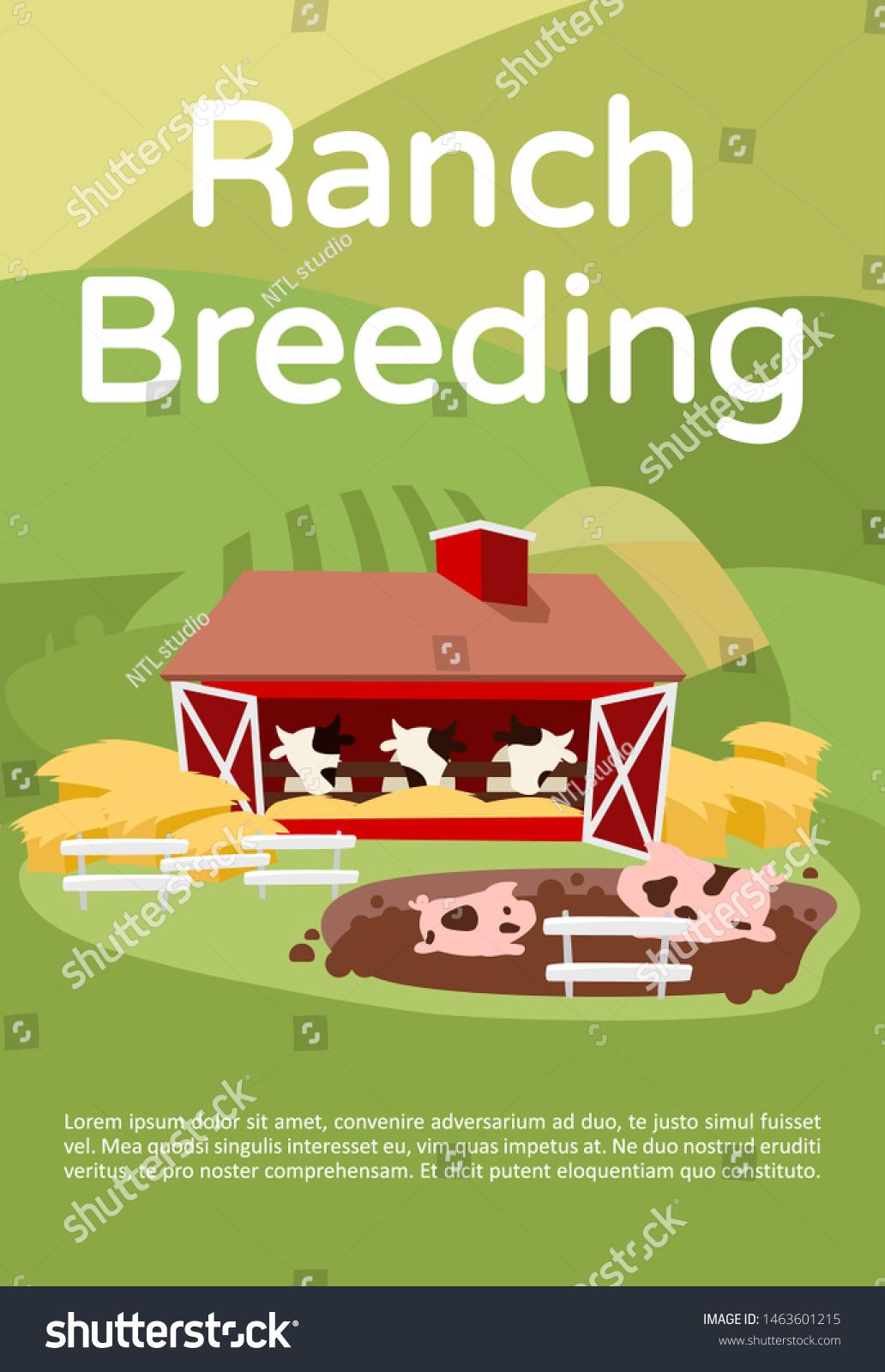 Ranch Breeding Brochure Template Livestock Cattle Stock ... on