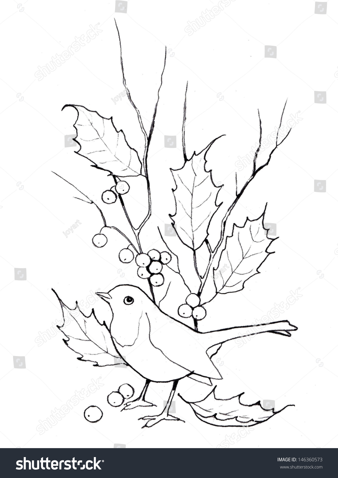 christmas holly bird freehand outline drawing stock illustration 146360573