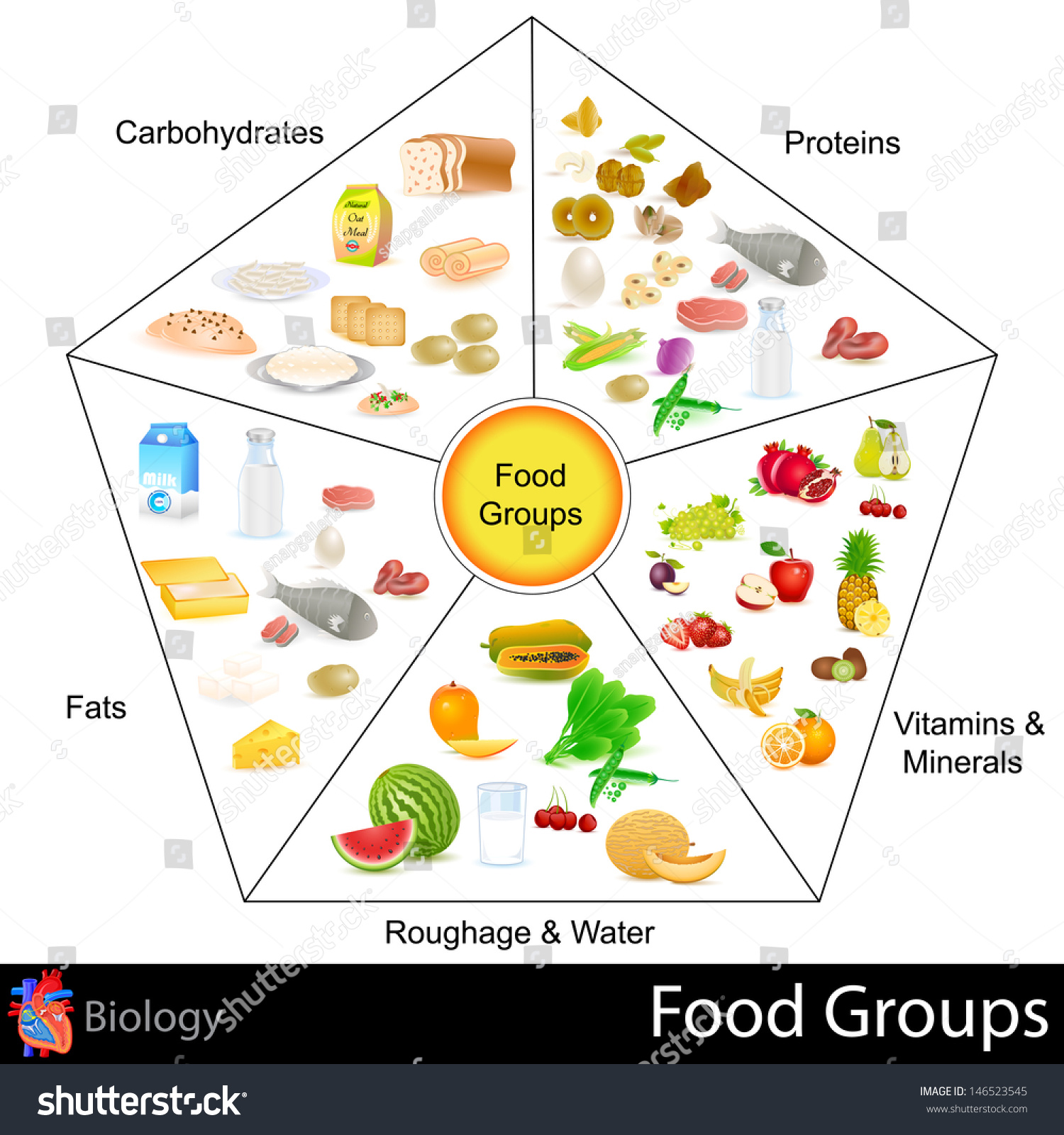 Easy edit vector illustration food group stock vector 146523545