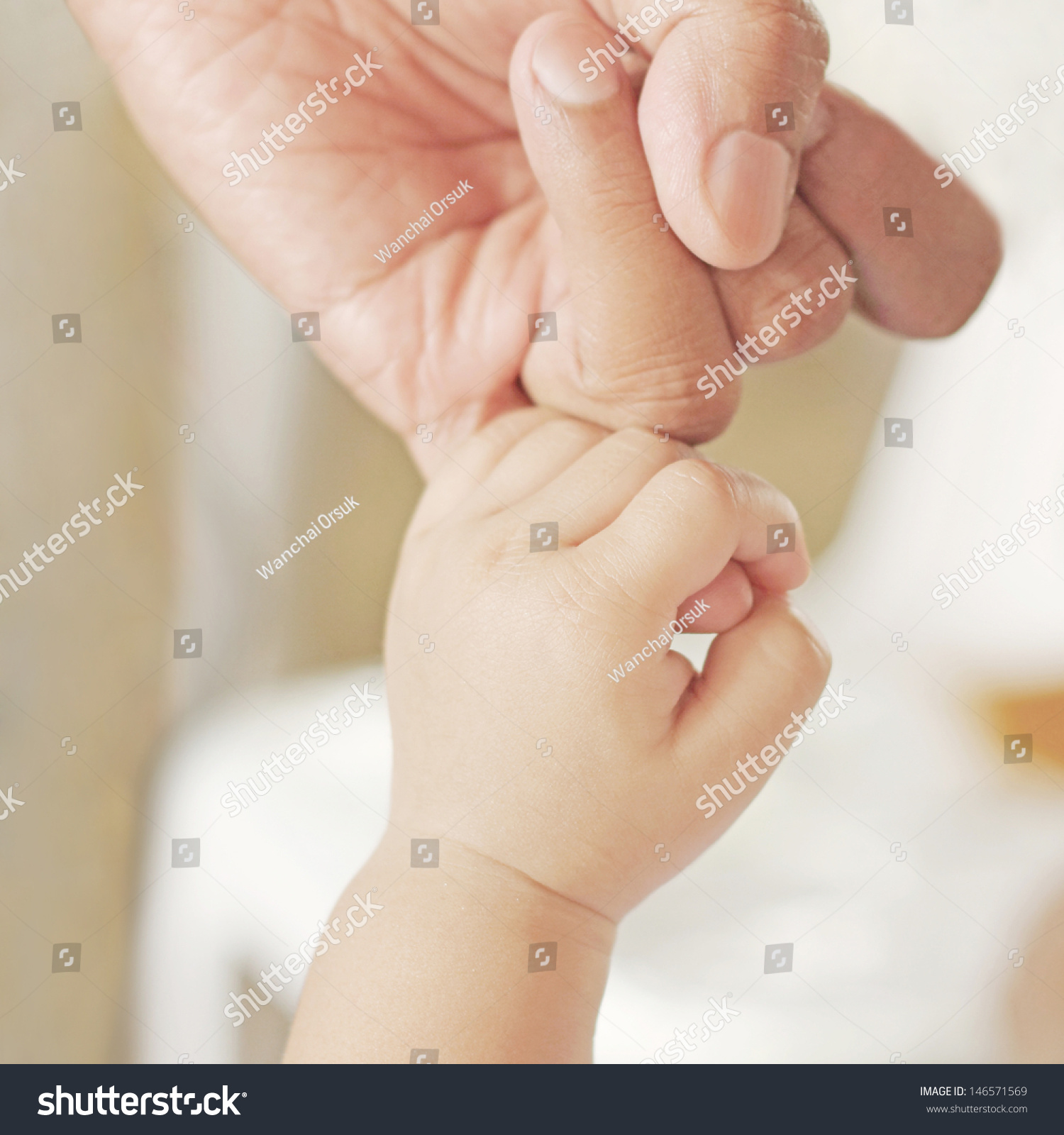 baby hand holding by adult People Photos Creative