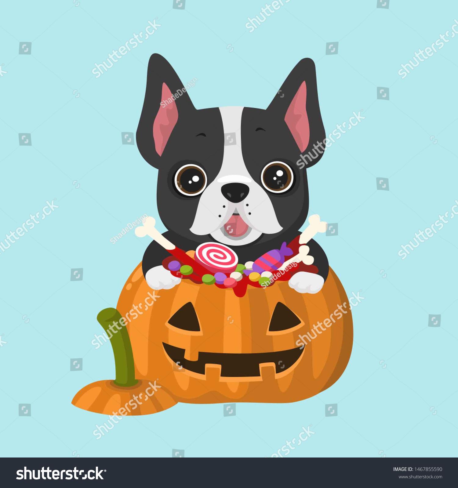 Vector Icon Dog Breed French Bulldog Stock Illustration 1467855590