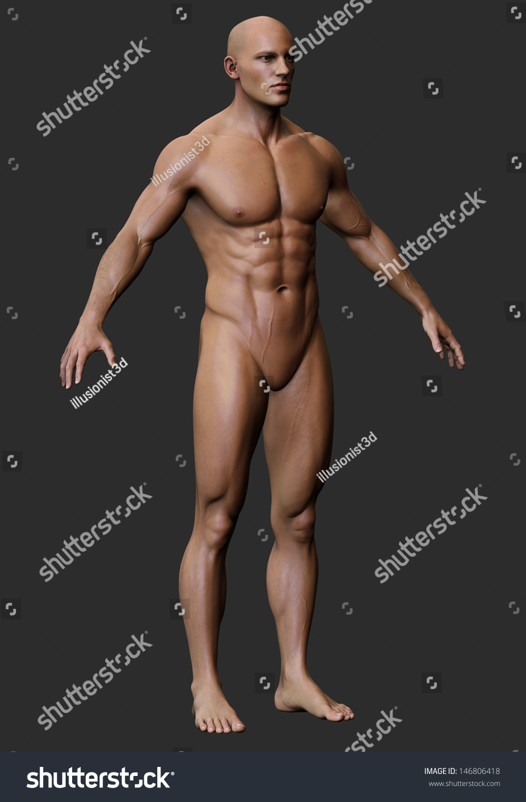 3d male body anatomy naked stock illustration 146806418 - shutterstock