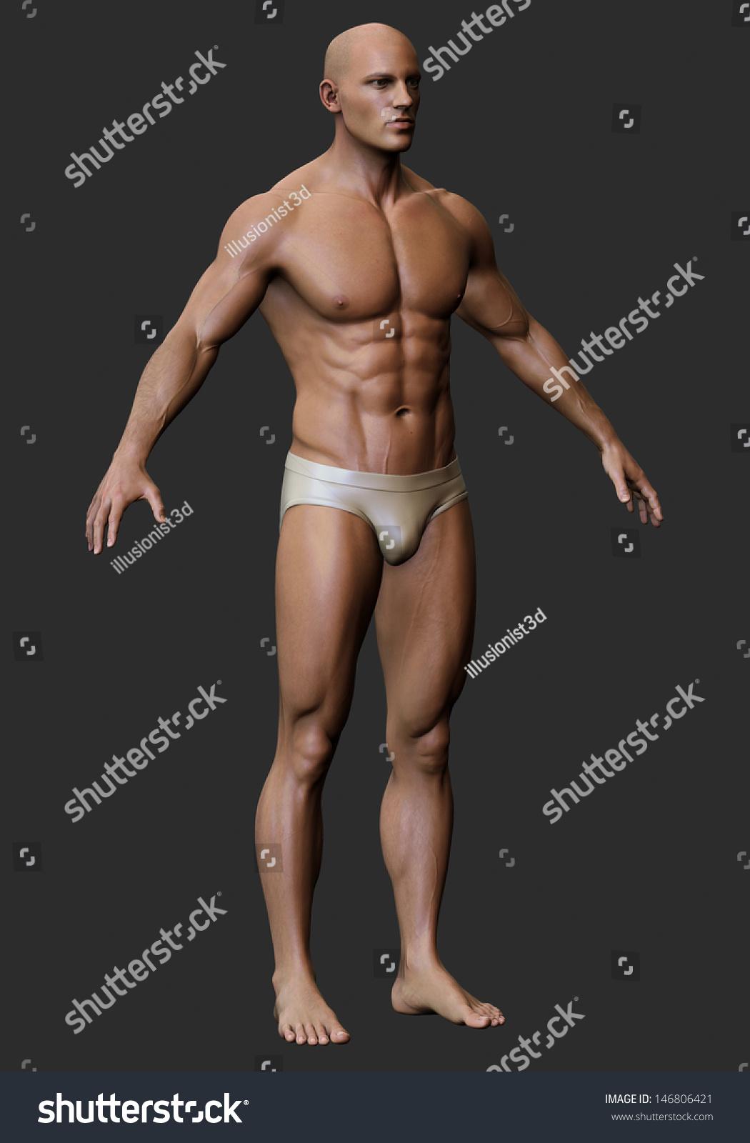 3 D Male Body Anatomy Stock Illustration 146806421 Shutterstock