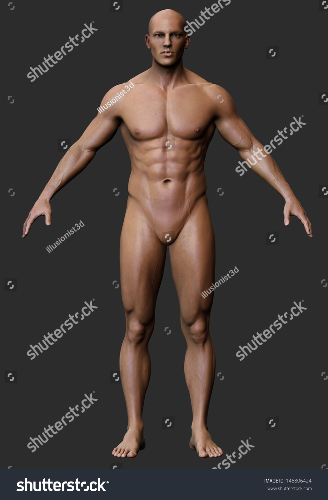 perfect nude male body