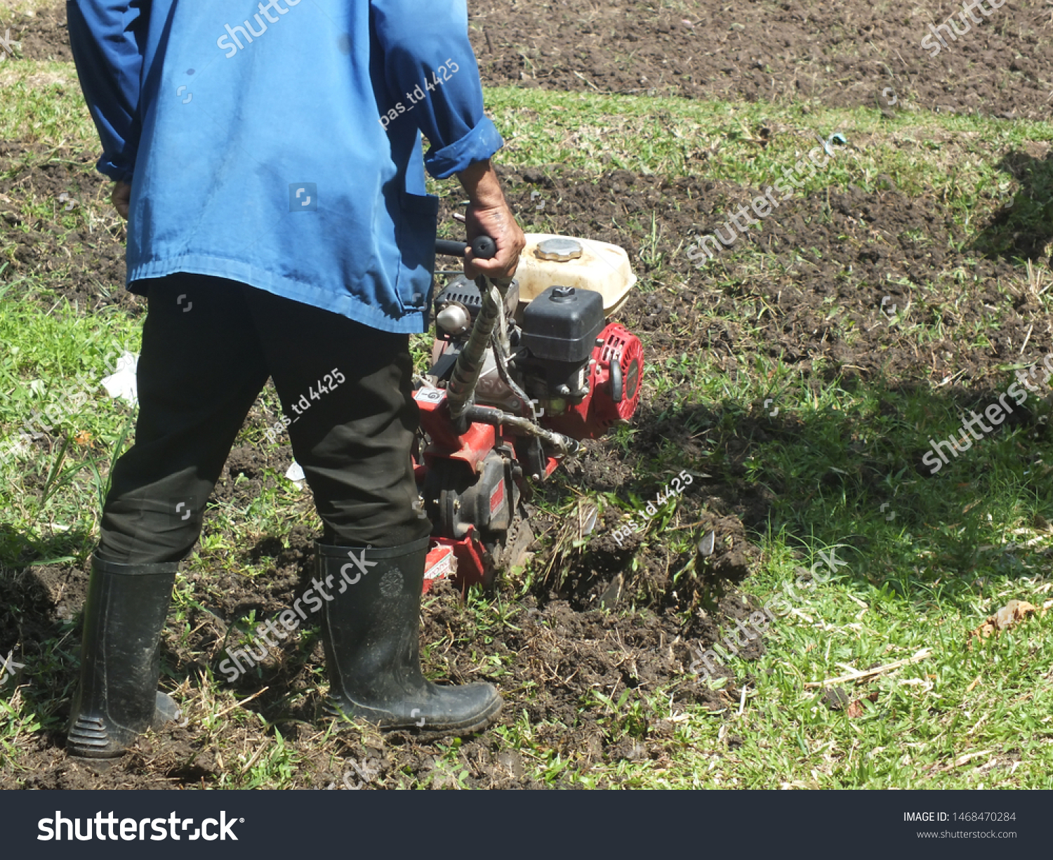 Farmer plowing the land in the garden with a hand tractor cultivator,Soil cultivation.  #1468470284