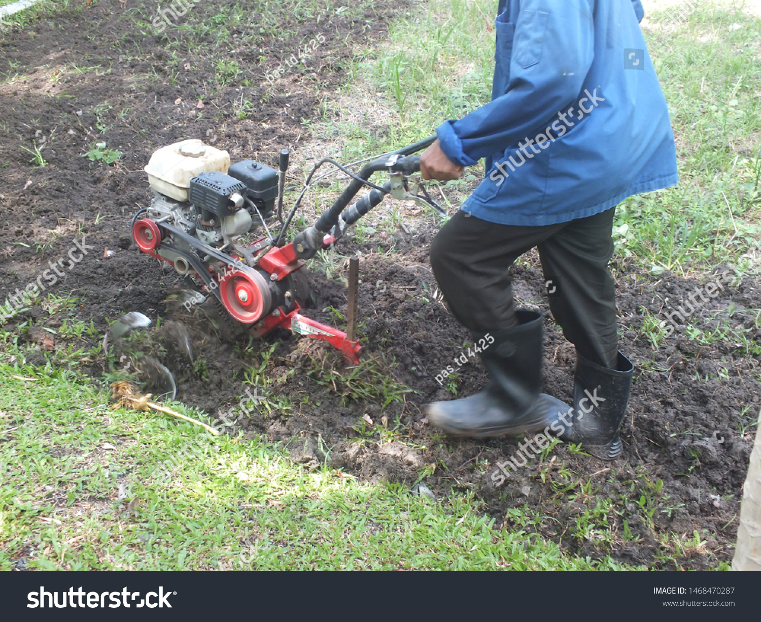 Farmer plowing the land in the garden with a hand tractor cultivator,Soil cultivation.  #1468470287