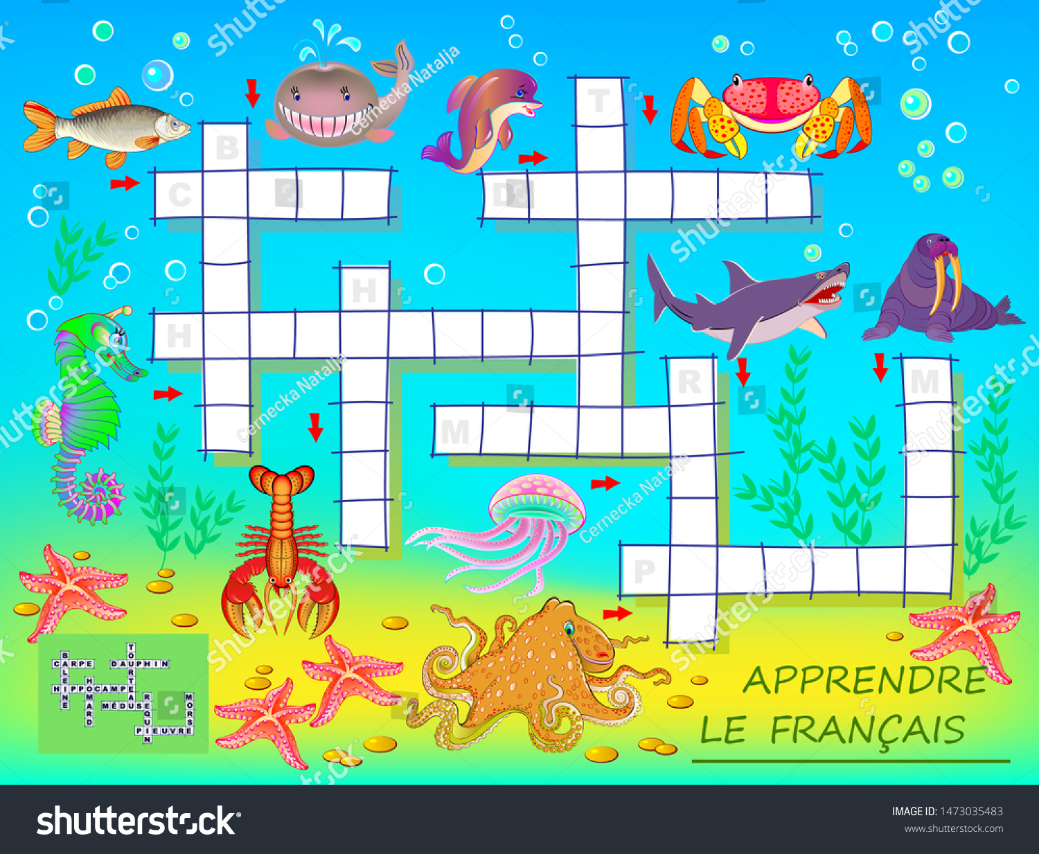 French crossword puzzles for kids with pictures to color