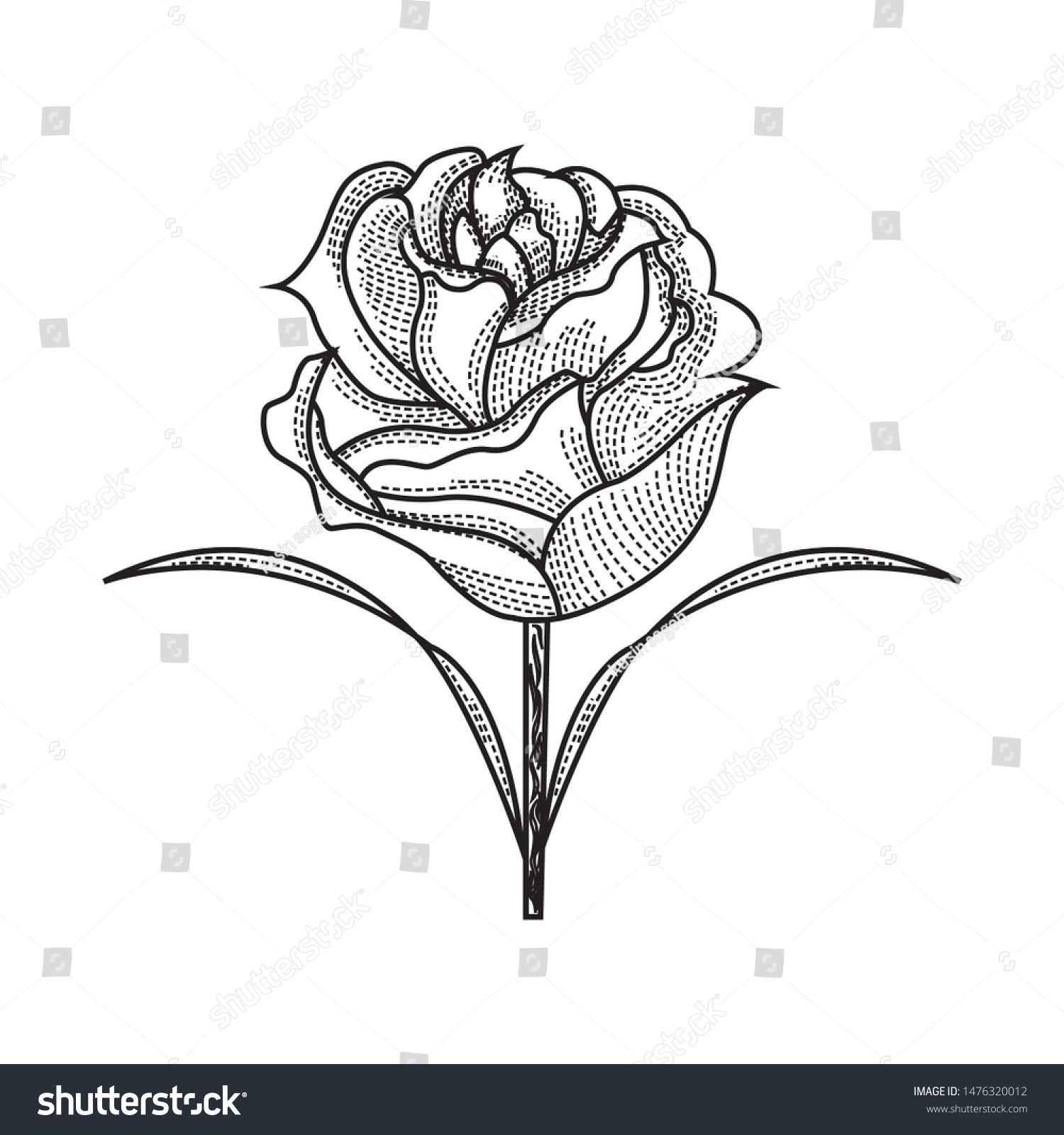 Rose with Thorns coloring page | Free Printable Coloring Pages | 1600x1500