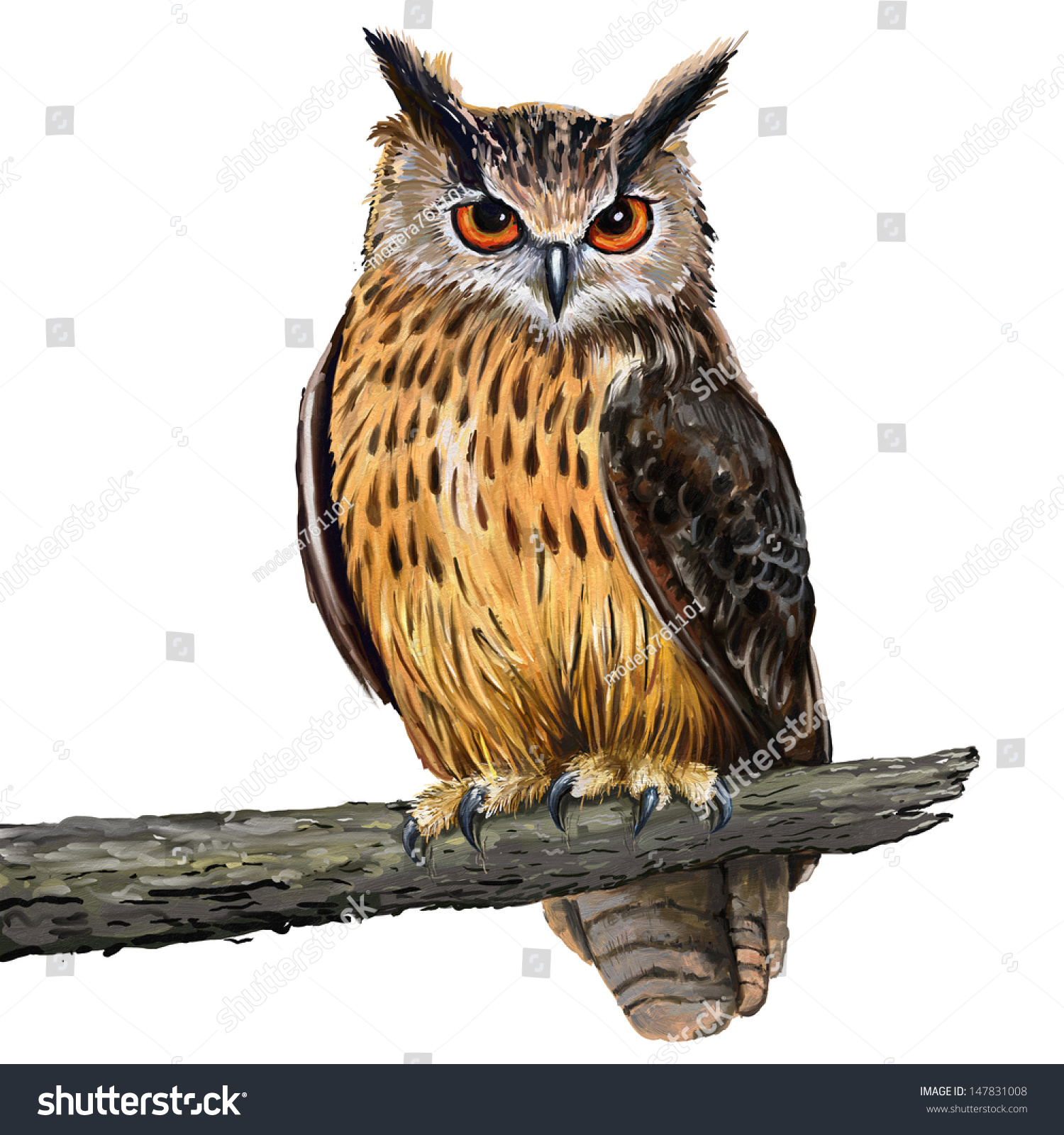 Oil Paintings Owls Stock Photo Digital Painting In Oil Painting Style