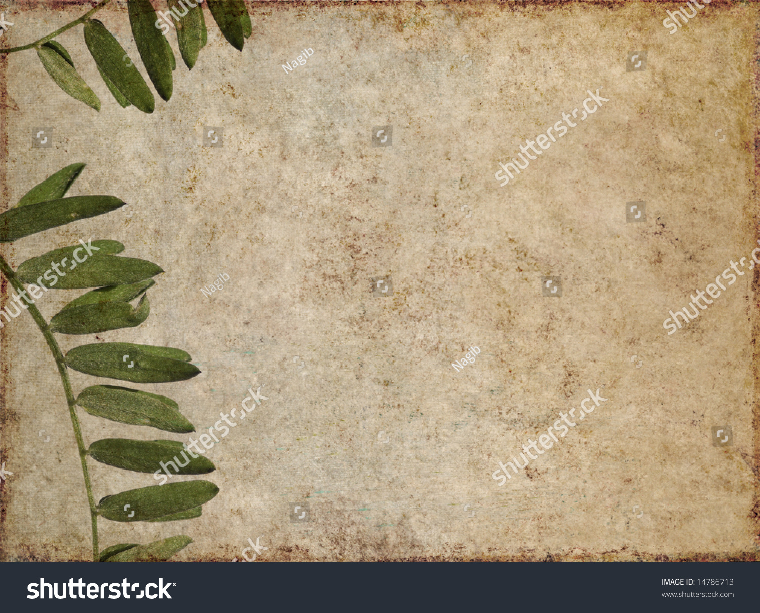 Lovely Brown Background Image With Interesting Earthy ... - photo#46