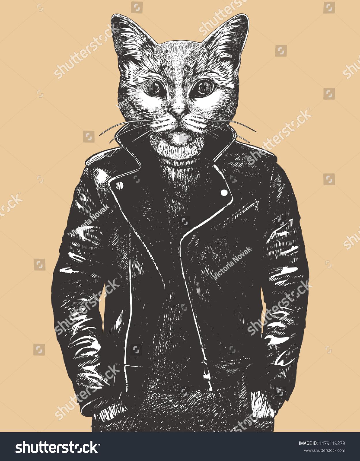 Portrait British Shorthair Cat Leather Jacket Stock Vector ...