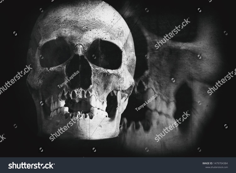 Scary Grunge Skull Wallpaper Halloween Black Stock Image