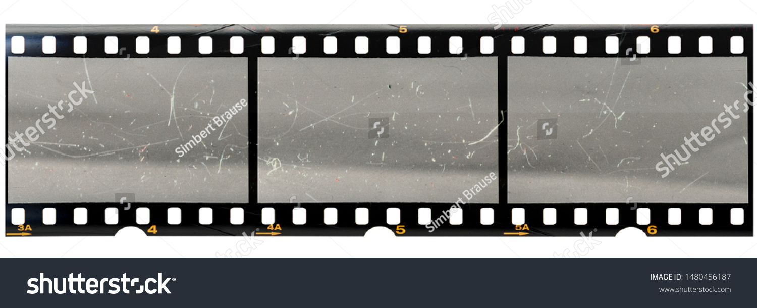 original 35mm filmstrip with empty dusty frames or cells and nice texture on the border, fluffs on film material, real film grain #1480456187