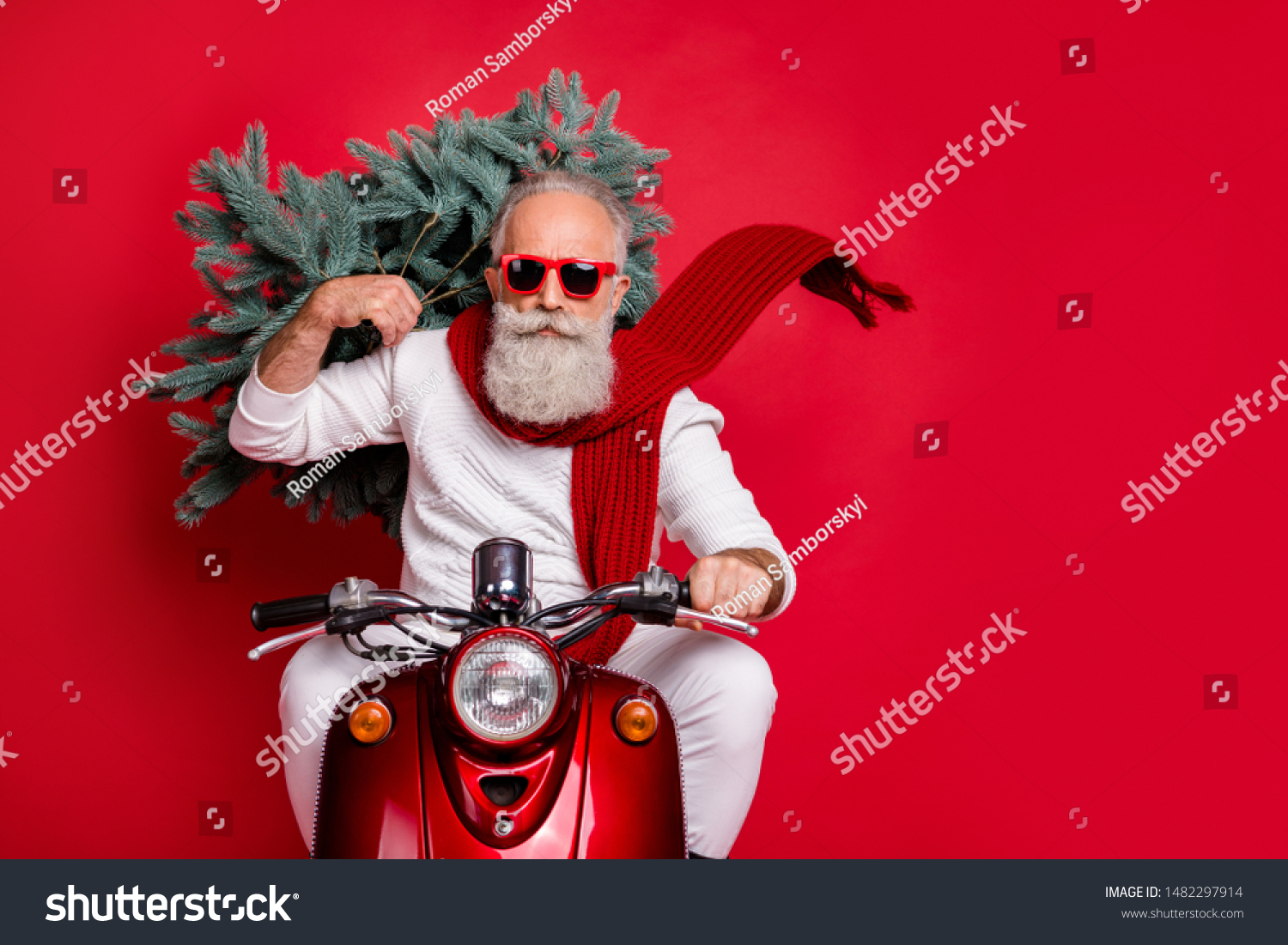 Portrait of handsome old hipster with eyewear eyeglasses carrying fir tree drive bike wearing white jumper trousers pants isolated  over red background #1482297914