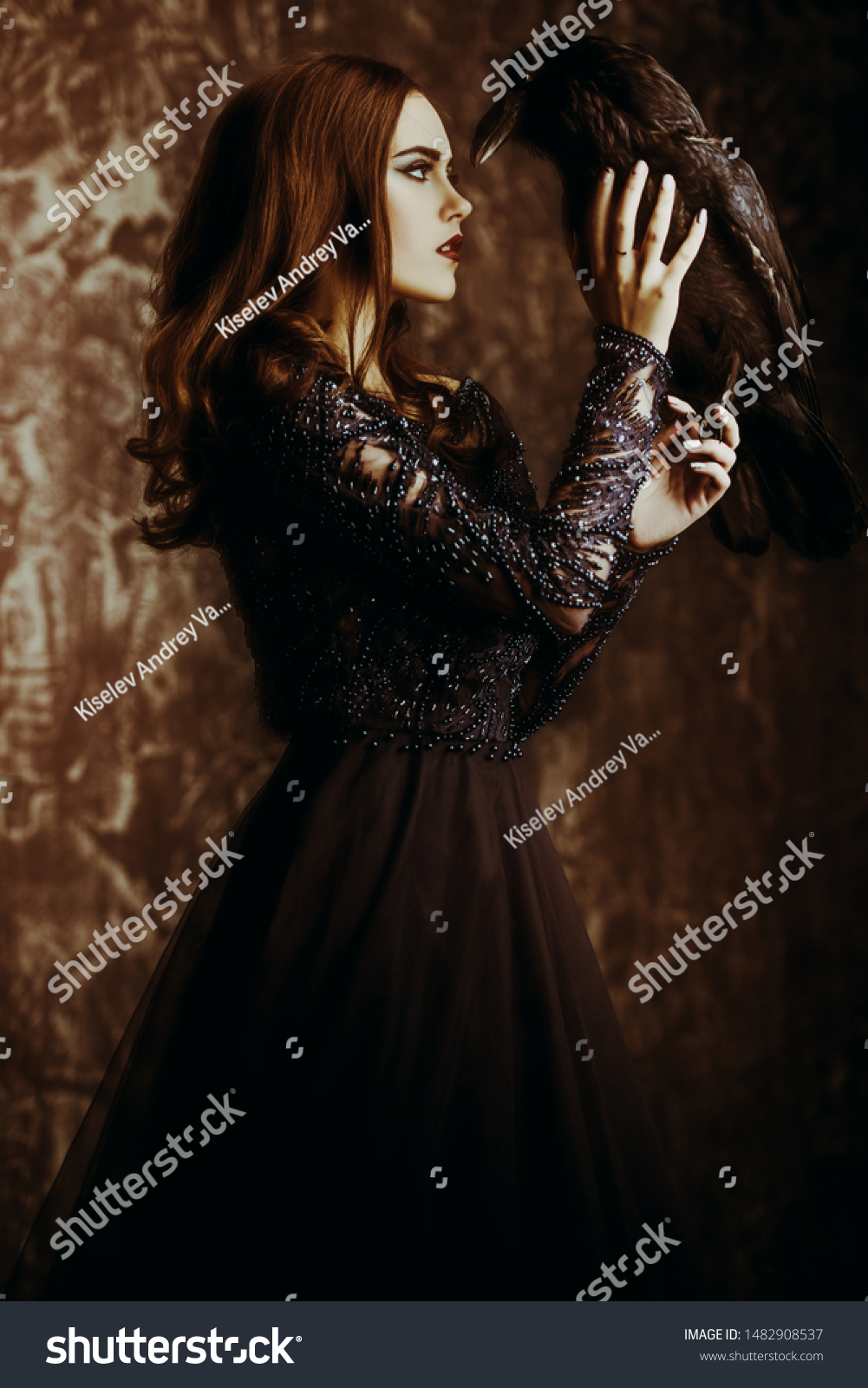 A witch a dress with a raven. Halloween. Celebration. #1482908537