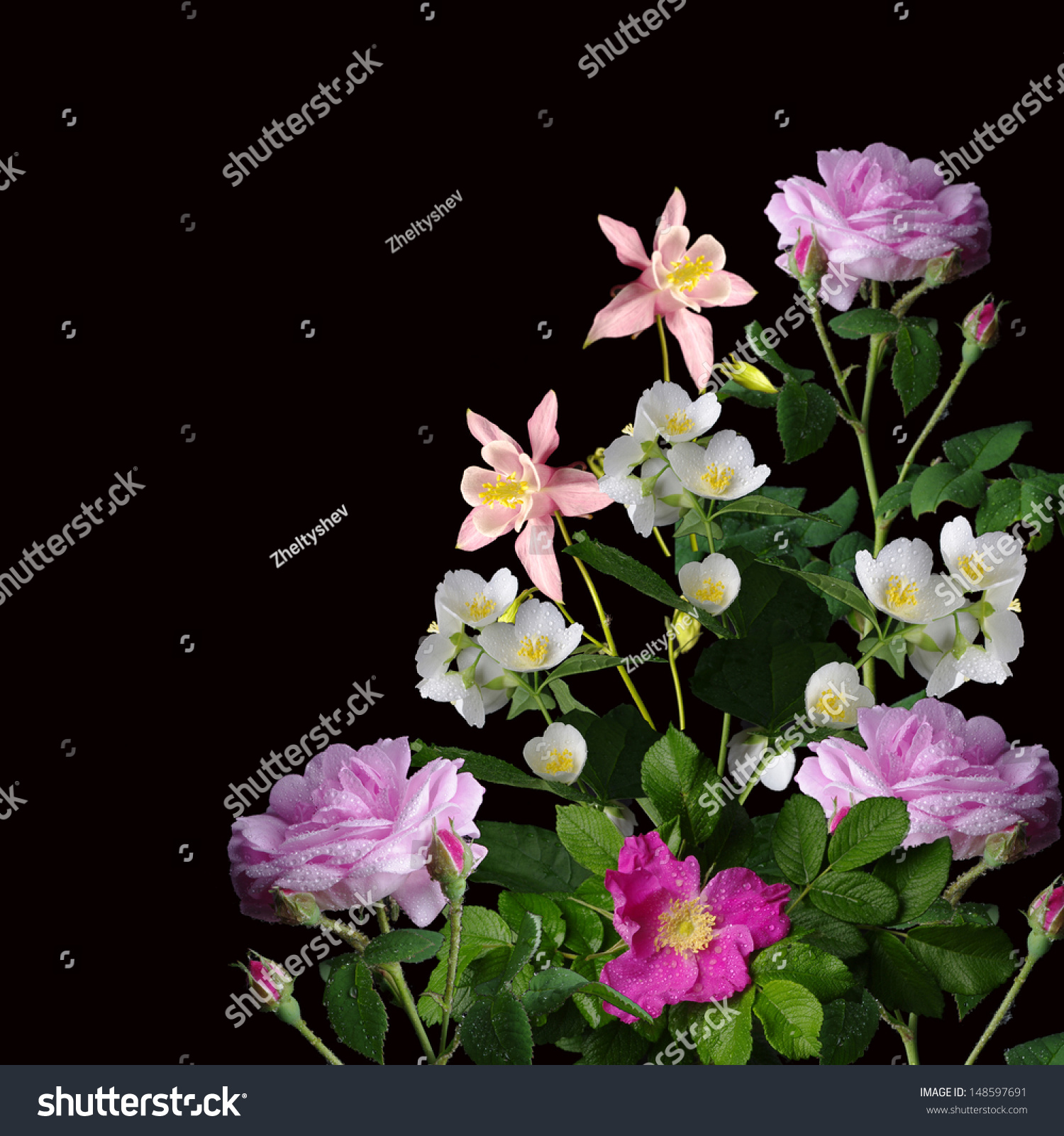 Spring flowers on black background roses stock photo royalty free spring flowers on black background roses wild rose lily of valley jasmine izmirmasajfo