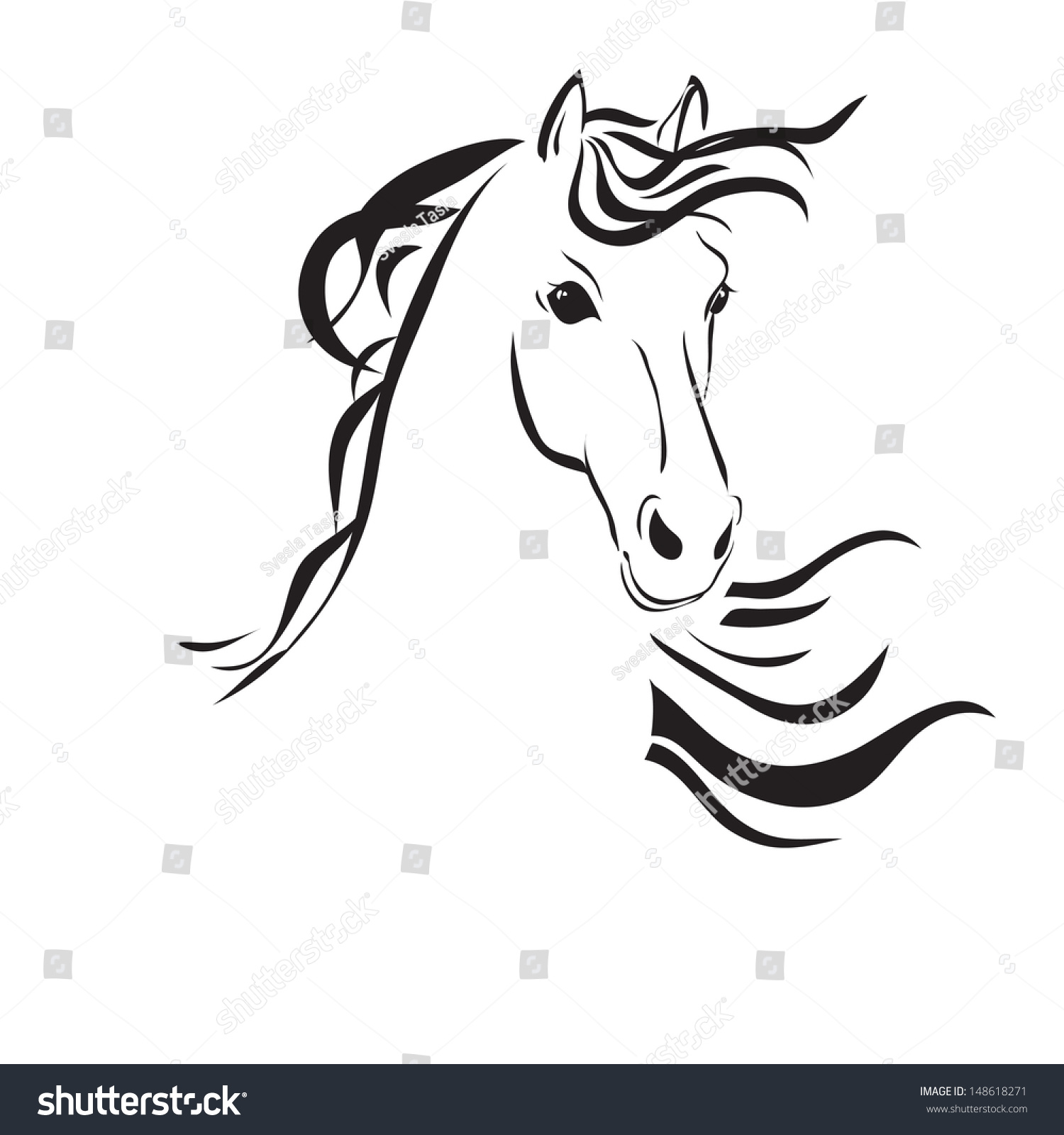 Line Drawing Horse Head : Line drawing horses head on white stock vector