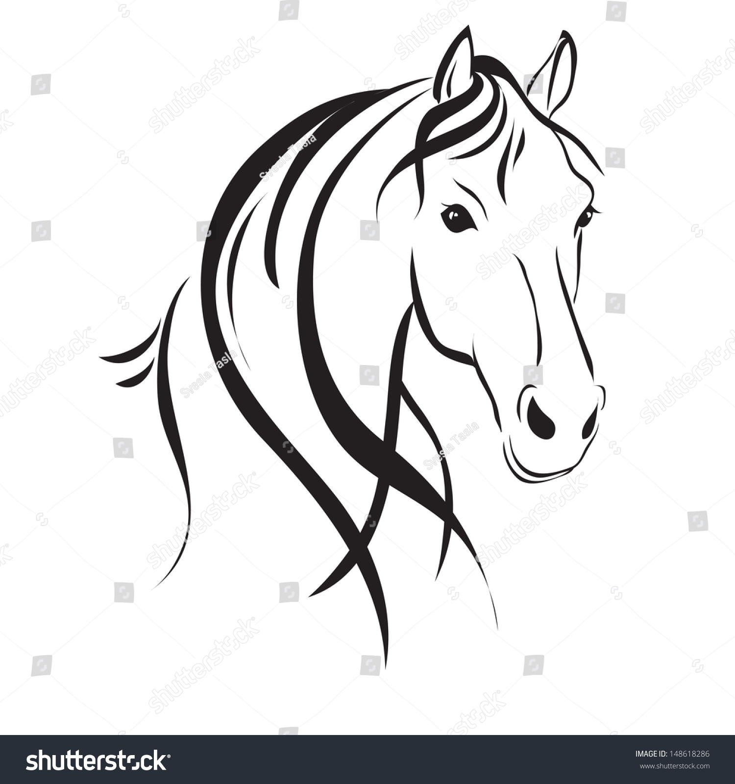 Line Drawing Horse : Line drawing horses head on white stock vector