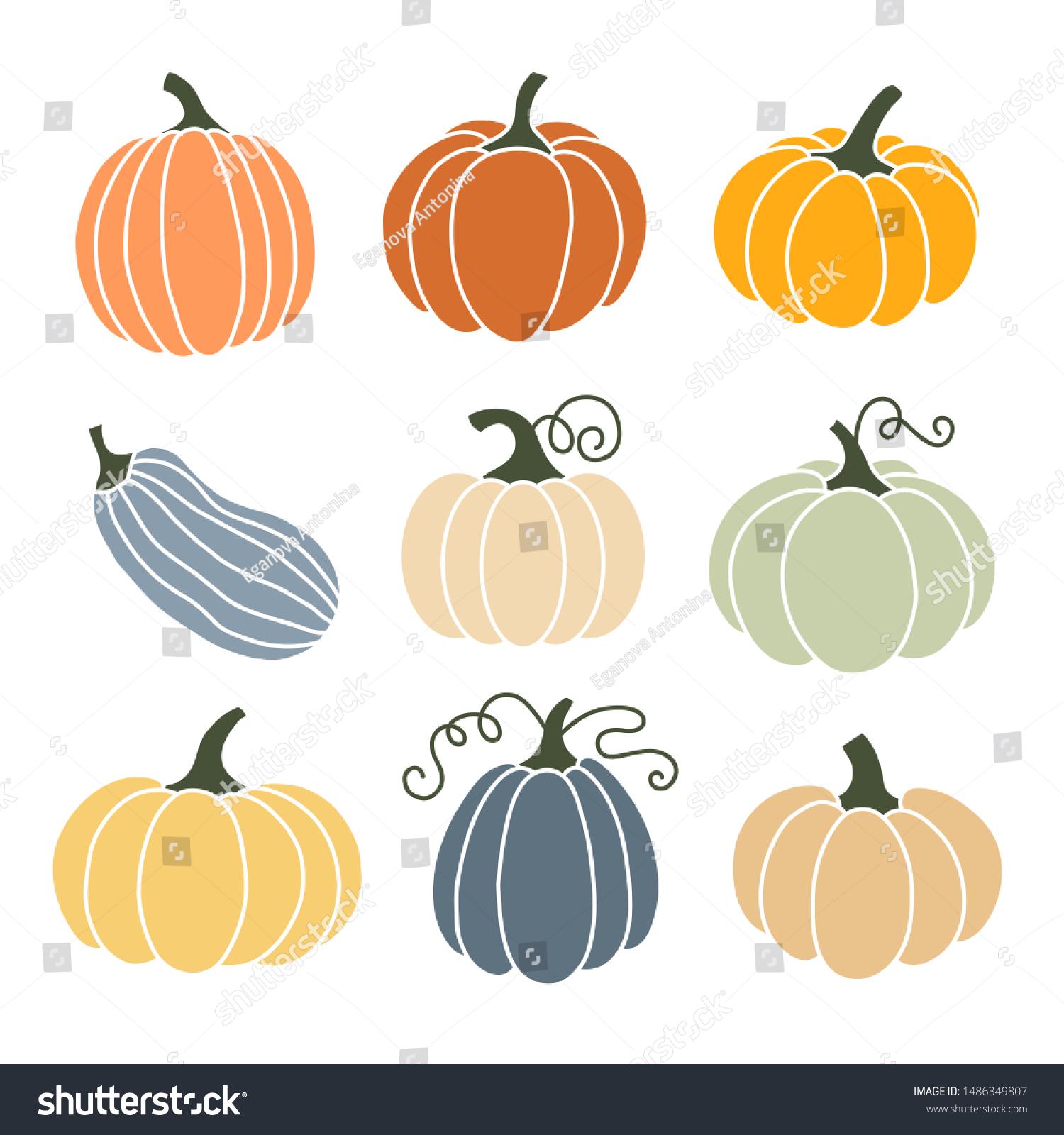 Citrouille de différentes formes et couleurs.  image vectorielle ...