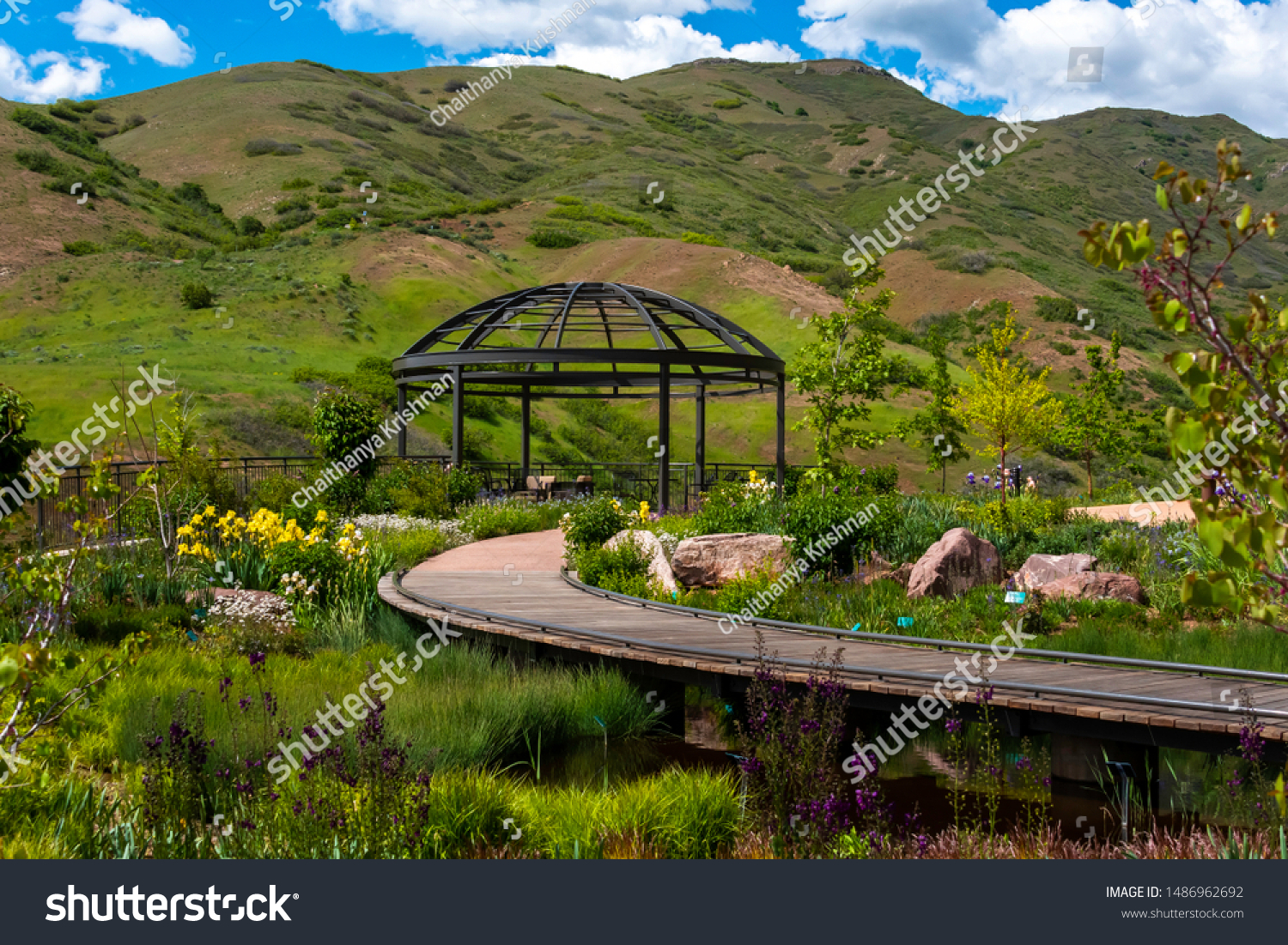 Bed Flowers Gardens Inside Red Butte Stock Photo Edit Now 1486962692