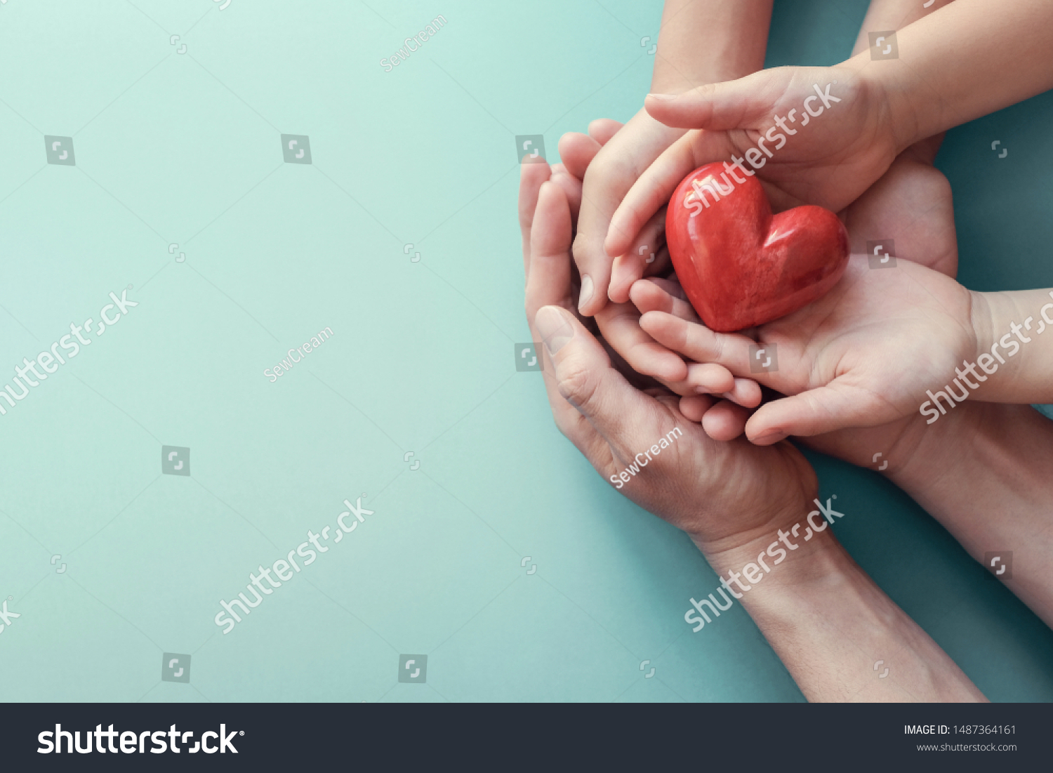 hands holding red heart, heart health, donation, happy volunteer charity, CSR social responsibility,world heart day, world health day,world mental health day,foster home concept #1487364161
