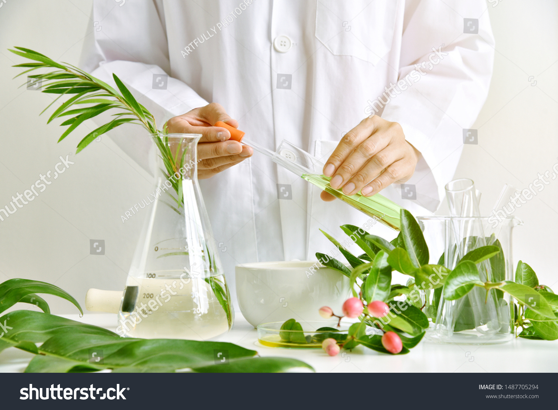 Medicinal herbal plant analysis, Natural organic botany drug research and development, Scientist formulating plant derived supplement medicine, Alternative traditional herbal remedies.  #1487705294
