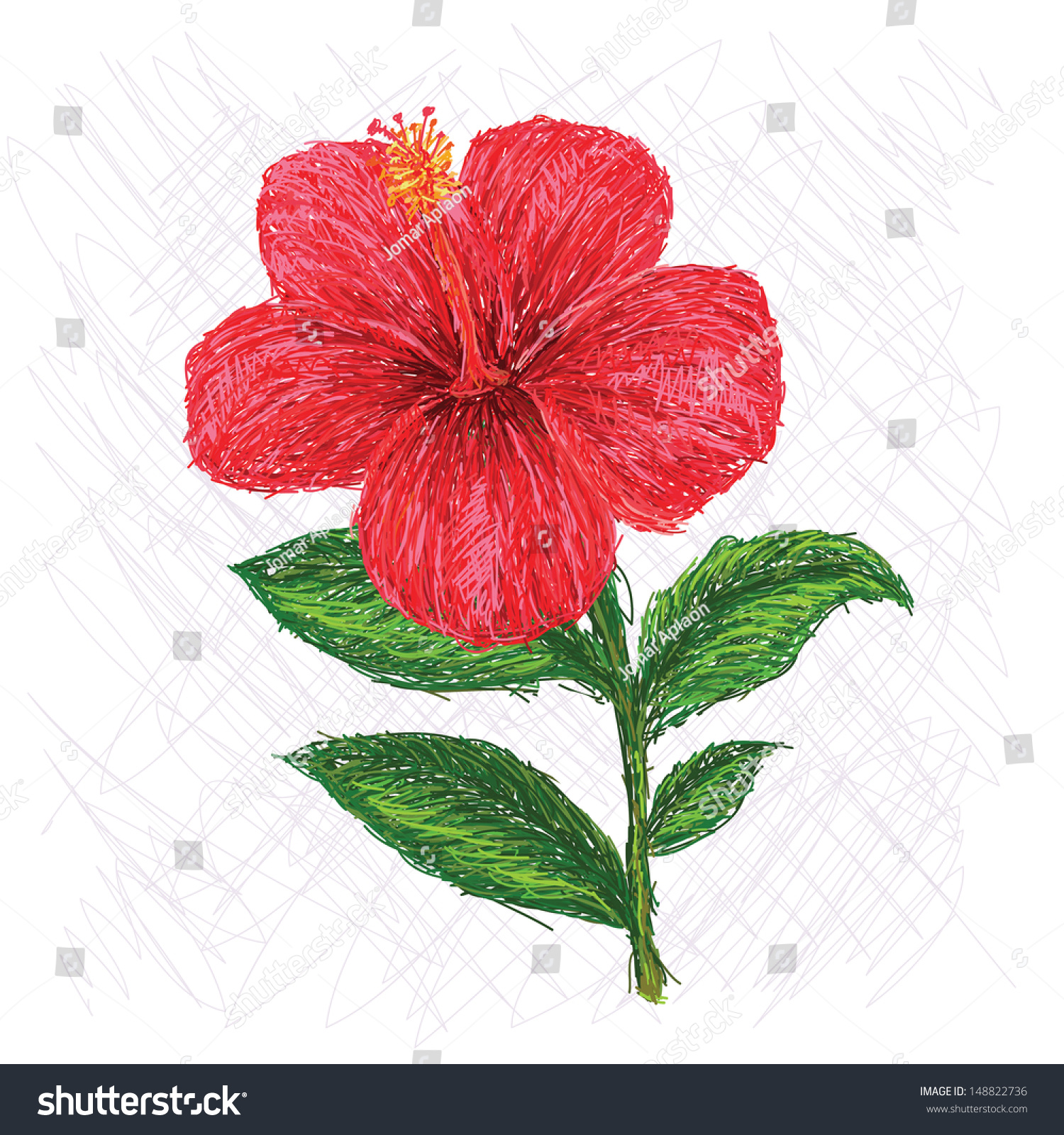 Unique style illustration hibiscus flower scientific stock unique style illustration of hibiscus flower scientific name hibiscus rosa sinensis izmirmasajfo
