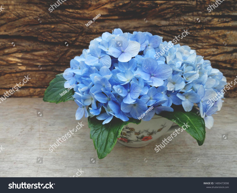 Antique Porcelain Cup Bouquet Blue Hydrangeas Stock Photo Edit Now 1489473098