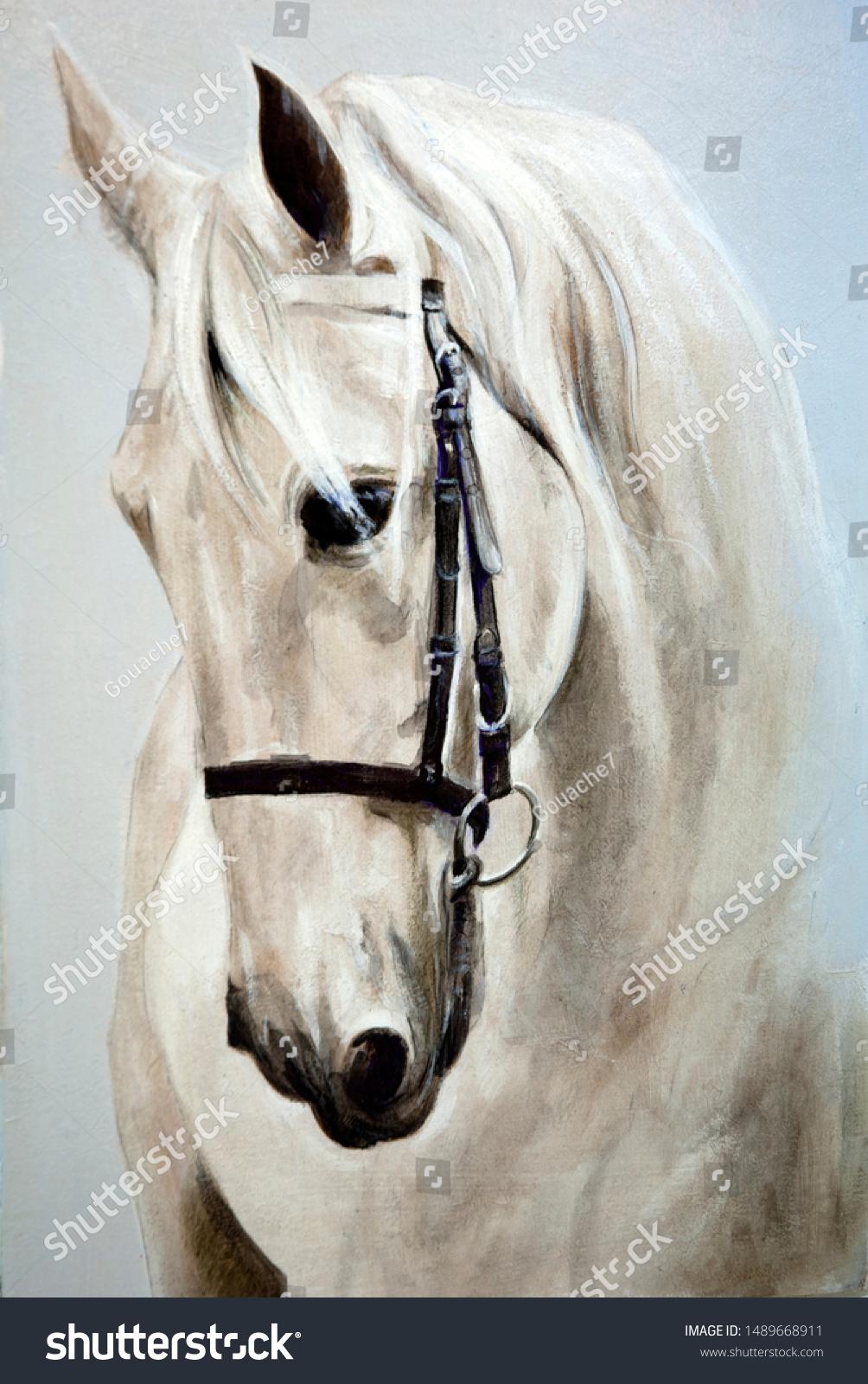 Head Profile White Horse Oil Painting Stock Illustration 1489668911