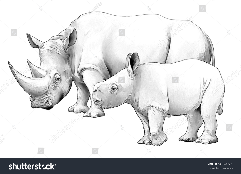 Cartoon Scene Rhinoceros Safari Animal Coloring Stock Illustration 1491785501