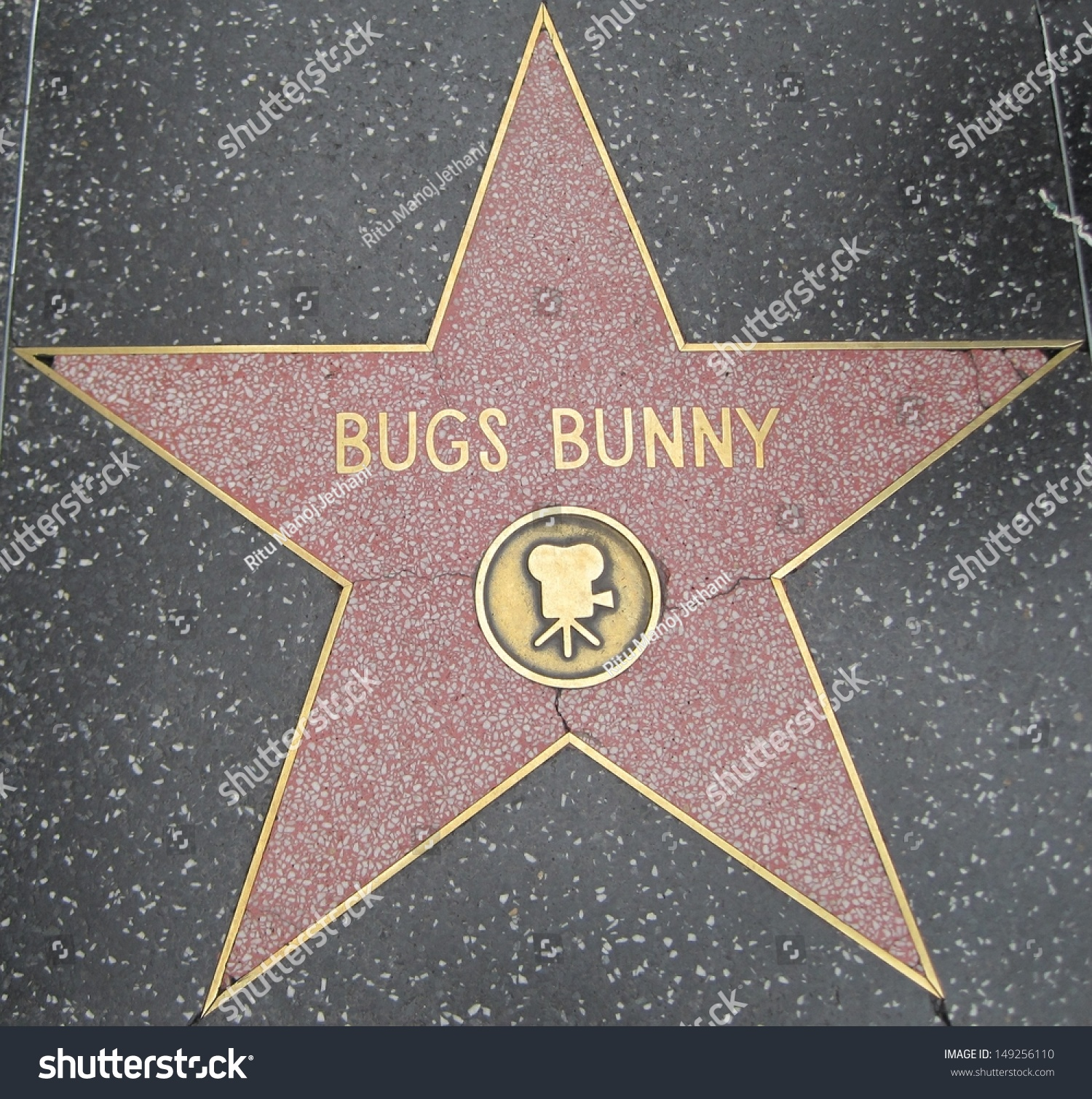 Stardom hollywood dating bug