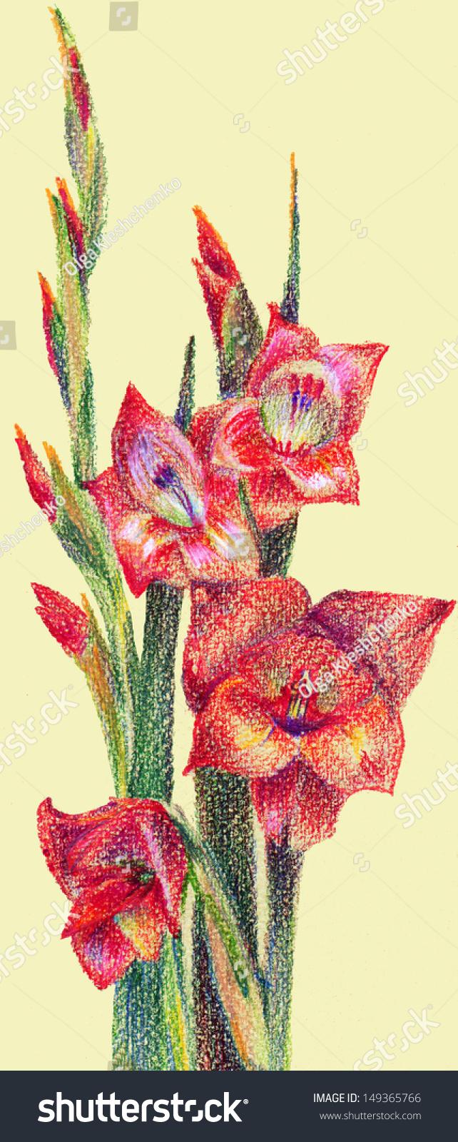 Fancy Colored Pencil Flower Ideas - Coloring Page - senderolasbrumas ...