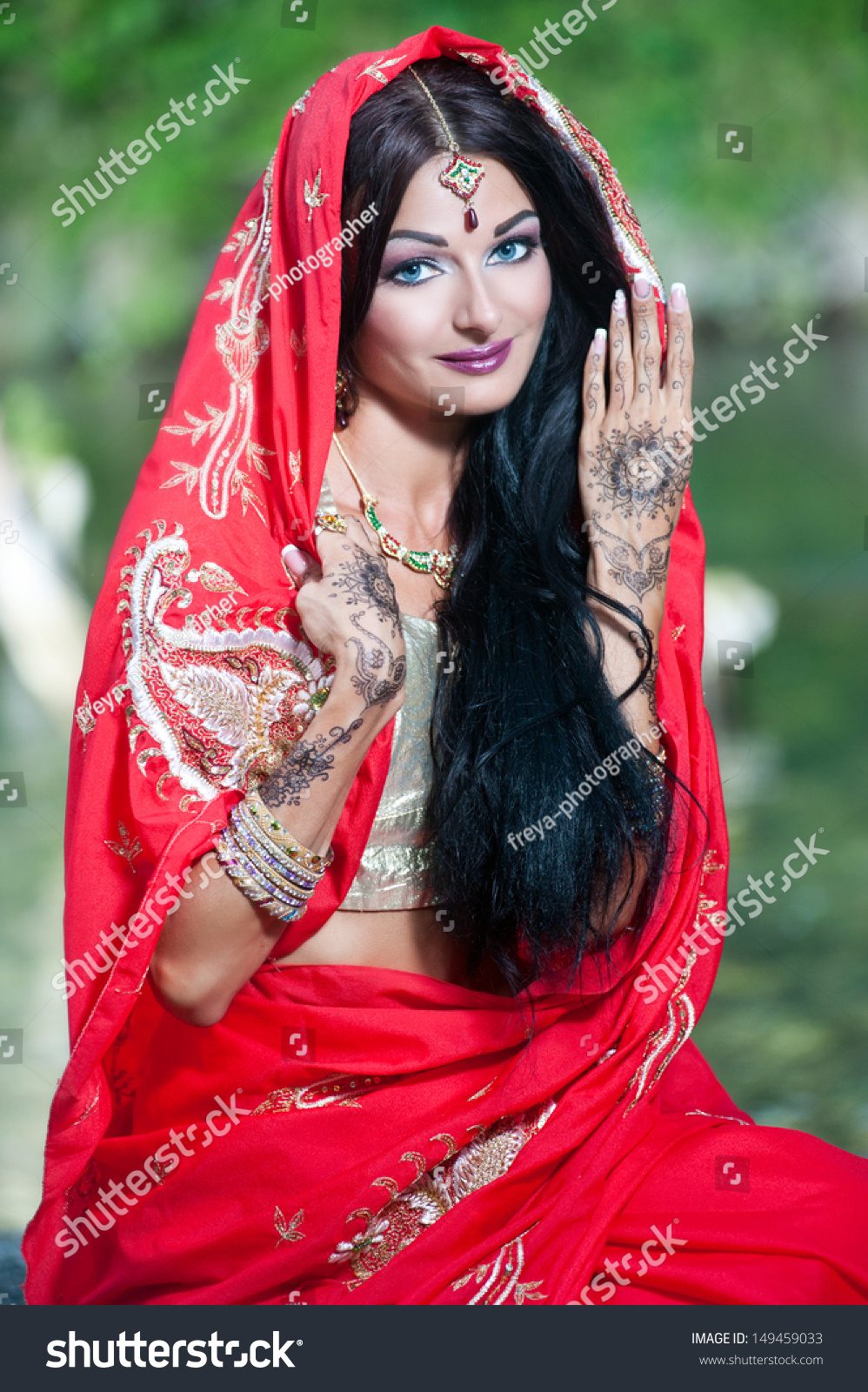 Beautiful Young Indian Woman Traditional Clothing Stock -5692