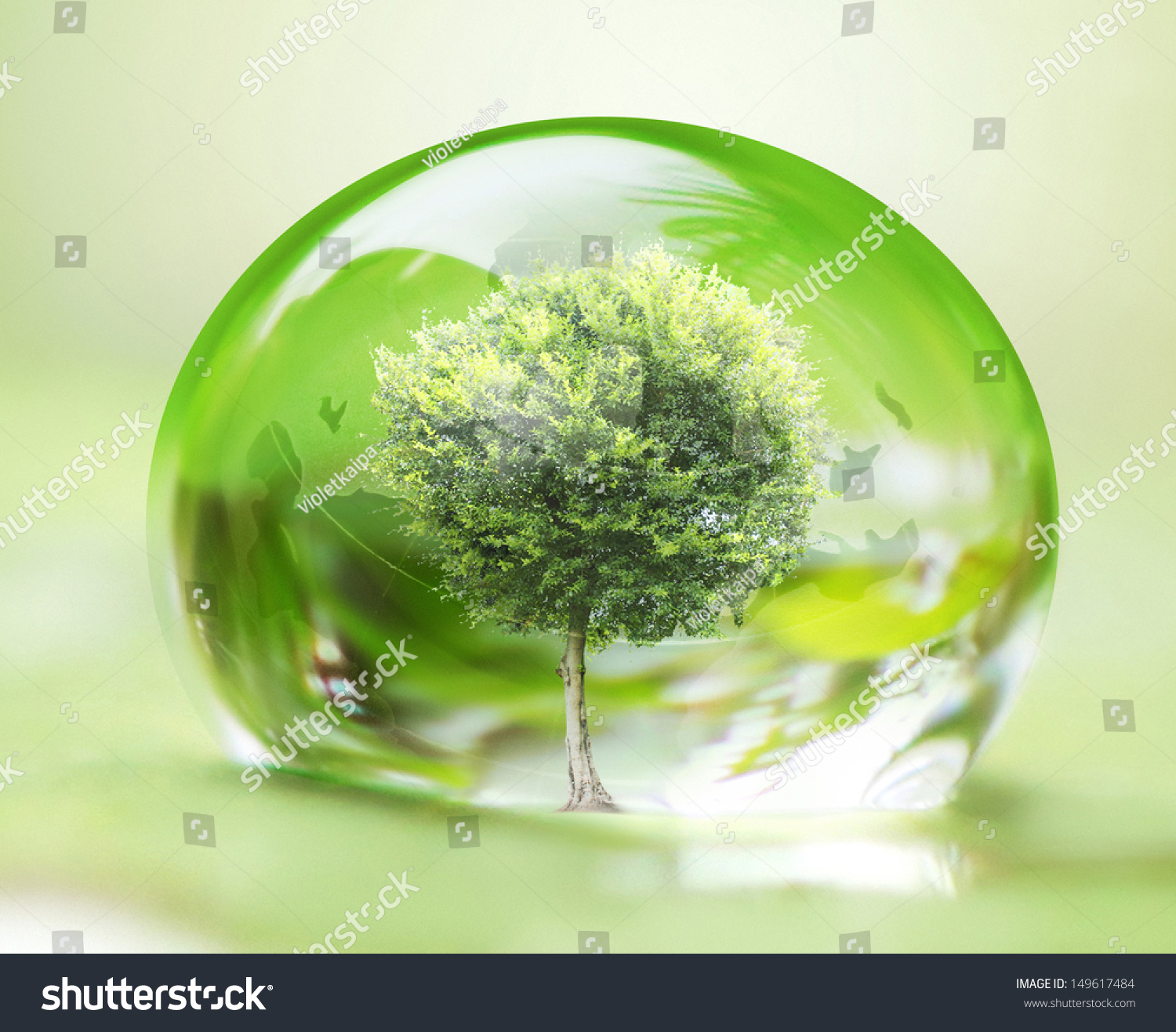 Tree In Water Drop On Leaves Stock Photo 149617484