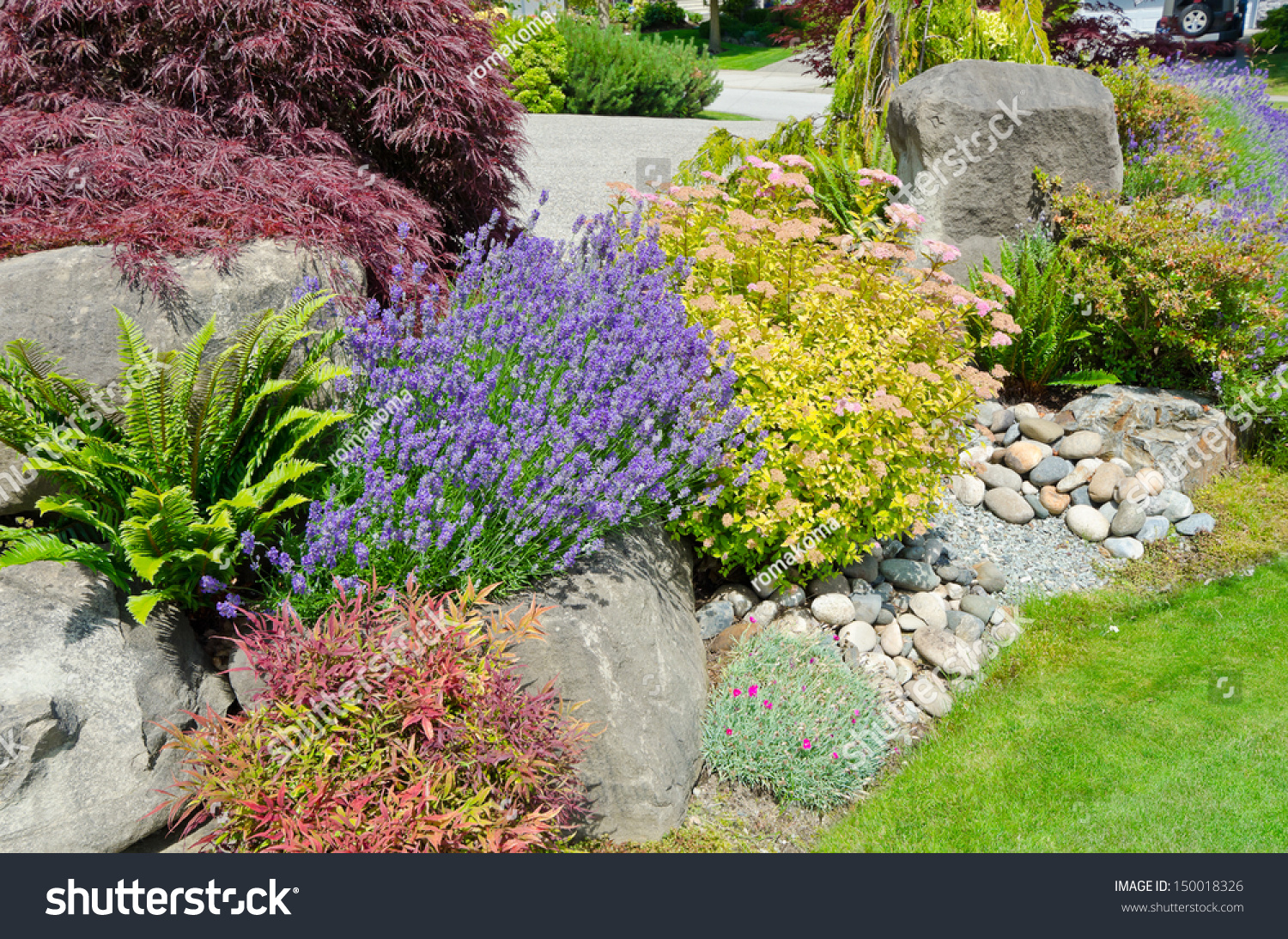Decorative Stones For Flower Beds Nicely Decorated Colorful Flowerbed Stones Bushes Stock Photo