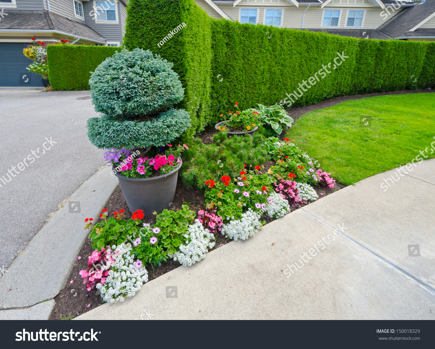 Some Flowers On Flowerbed Nicely Trimmed Stock Photo Edit Now 150018329